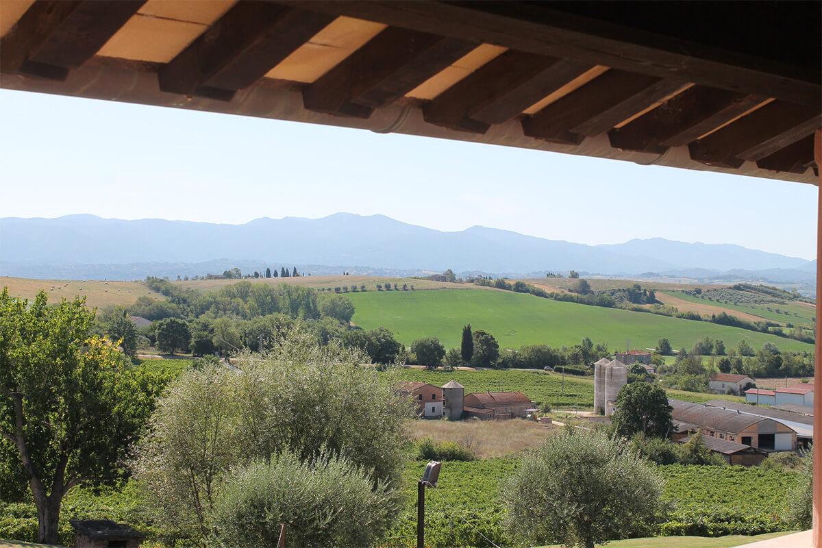 Vacanze in Umbria visuale Tenuta Marchesi Fezia