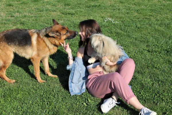 Scegli la Tenuta Marchesi Fezia per il tuo weekend con cane
